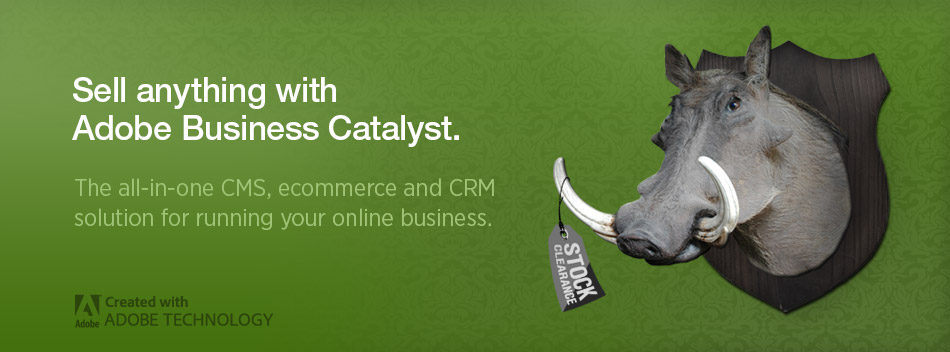 Adobe Business Catalyst - Ecommerce
