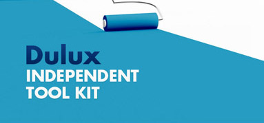 Dulux Independent Tool Kit